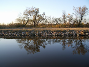 Photo: On reflection, it was a calm day on the canal