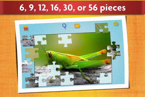 Insect Jigsaw Puzzles Game - For Kids & Adults ud83dudc1e 25.0 screenshots 3