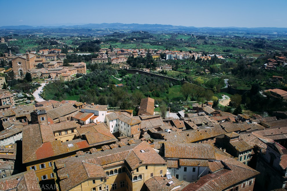 Сиена, провинция Тоскана, вид с городской башни
