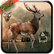 Deer Sniper Hunter 2015-FPS