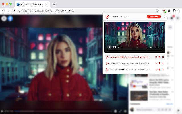 The Flash Video Downloader