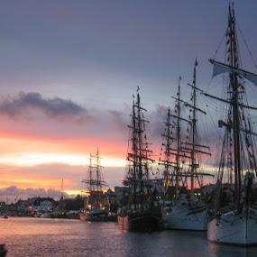 Tall ship race 2005 by Morten Gustavsen - Transportation Boats ( tall ship race, sail ship, ship, sunset, norway )