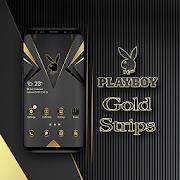 Playboy Gold Strips Theme