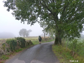 Photo: Départ dans la brume matinale....