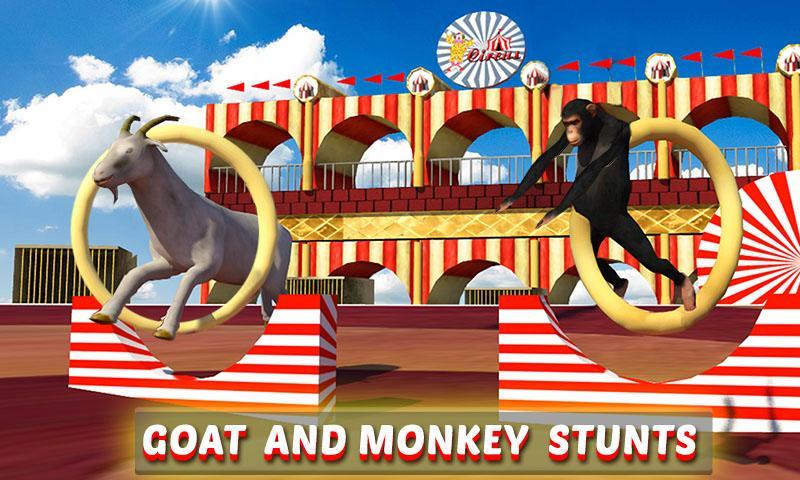 Goat-Monkey-Stunts 23