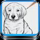 Download Como Dibujar Perros Paso a Paso Y Desde Cero For PC Windows and Mac