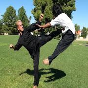 Shaolin kungfu techniques