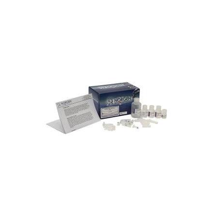 Plasma/Serum Circulating and Exosomal RNA Purification Mini Kit (Slurry Format)