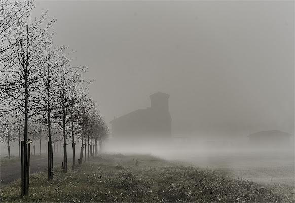 La nebbia copriva la terra di Saltini Rino