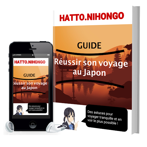 ebook japon guide