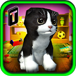 Cat Frenzy 3D Icon