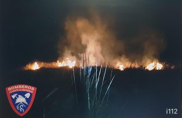 Imagen del incendio forestal de Bédar.
