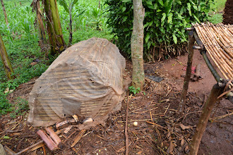 Photo: Mosquito net used as chicken coop