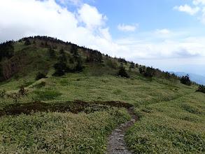 根子岳へは右側から廻り込む
