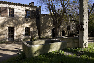 Photo: Mas Carlin . AOC Baux de Provence/ Vin de Pays des Alpilles. Mas Blanc des Alpilles. Bouches du Rhône.