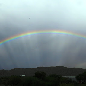 Rainbow by Kleintjie Loots - Landscapes Weather ( wilma loots )