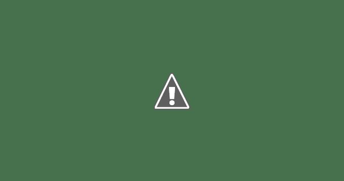 亞尼克生乳捲-抹茶蕨餅