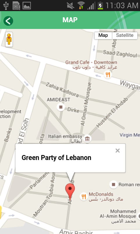 Green Party of Lebanon- screenshot