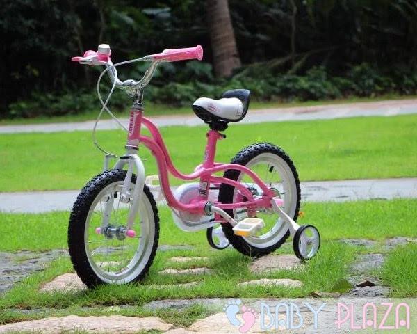 Xe đạp Royal Baby RB-18 2