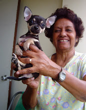 Photo: marta rojas, a cuban writer, and her chihuahua, tequilita. Tracey Eaton photo