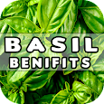 Basil Benefits icon