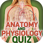 Human Body Anatomy Quiz Icon