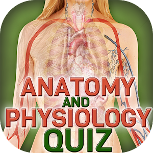 Human Body Anatomy Quiz