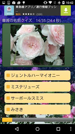 薔薇の名前クイズ
