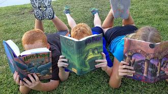 Cada libro para una edad.  Imagen de Mary Clark en Pixabay .