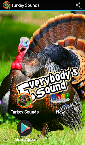 st natural sound turkey - 300×512