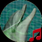 Ocean sonar sounds ~ Sboard.pro