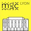 MAC Lyon, œuvres de la collection Icon