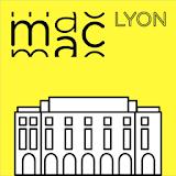 MAC Lyon, œuvres de la collection