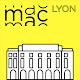 MAC Lyon, œuvres de la collection (app)