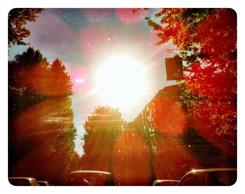 primavera_luce nuova di ada_marto