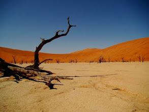 Photo: Désert du Namib, Deadvlei en Namibie.