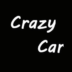 CrazyCar screenshot 1