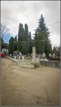 Photo: Conifere - din Cimitirul Crestin Central - 2017.12.11