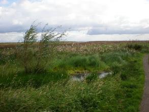Photo: Norfolk Coast Path - From Brancaster to Warham - Approaching Burnham Deepdale