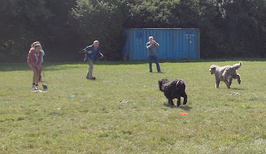 Photo: DogBasics Fun Day 2013 - Fastest/Slowest Recall race
