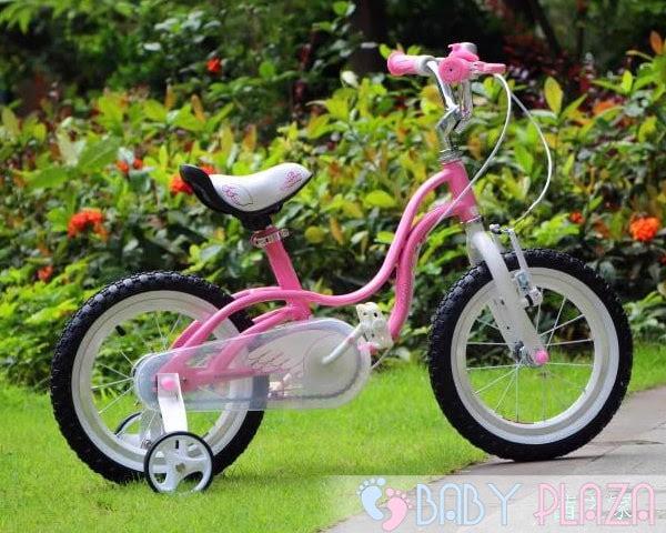 Xe đạp Royal Baby RB-18 3