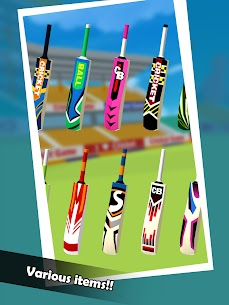 Cricket Boy:Champion Apk Download For Android 9