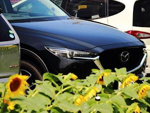 CX-5 KF5P 25S プロアクティブ 4WDのカスタム事例画像 園原華音さんの2020年07月19日15:37の投稿