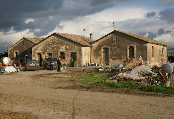 La fattoria di tuccio15