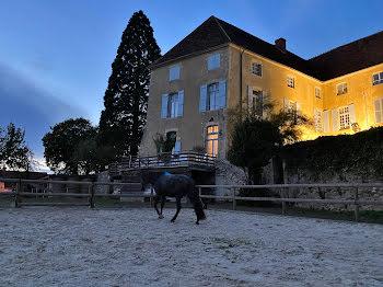 château à Asnois (58)