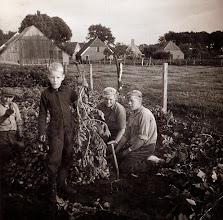 Photo: Ede Hofsteenge helpt Rieks Oosting met aardappel krabben