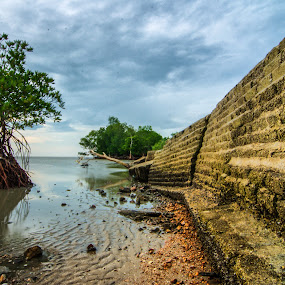 the wall by Faareast Mk - Landscapes Weather ( clouds, water, beaches, tree, wall )