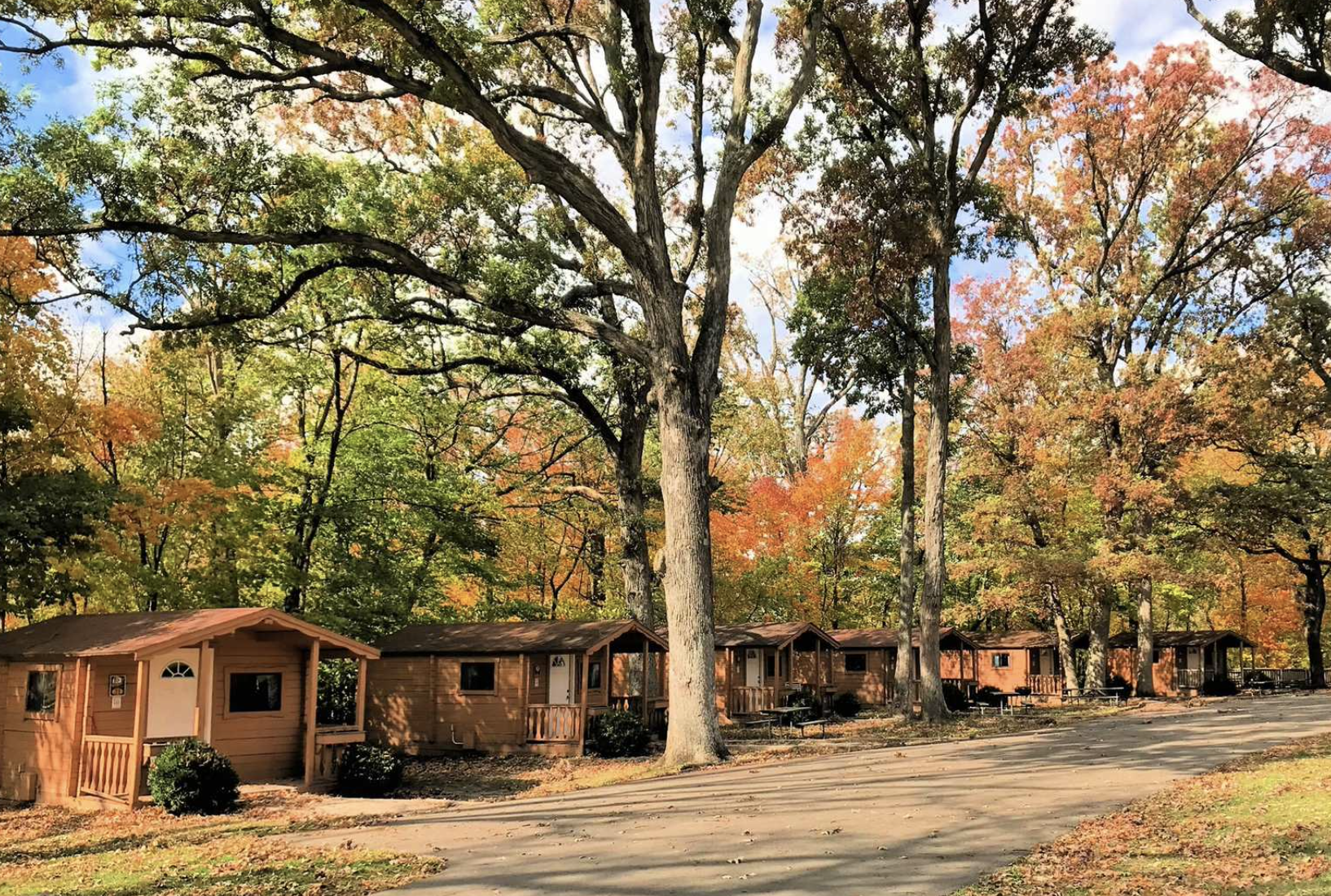 Cabins in the woods during fall time at Jellystone Park Chicago
