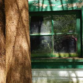 Framed by Karen McGregor - Buildings & Architecture Decaying & Abandoned (  )