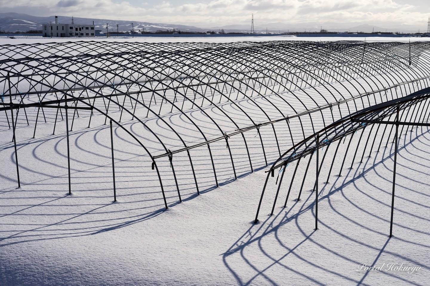 雪面のスノーアート